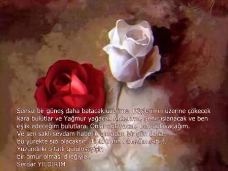 Sevgiliye Özlem Şiirleri,Duygusal Özlem Şiirleri,Serdar Yıldırım Şiirleri